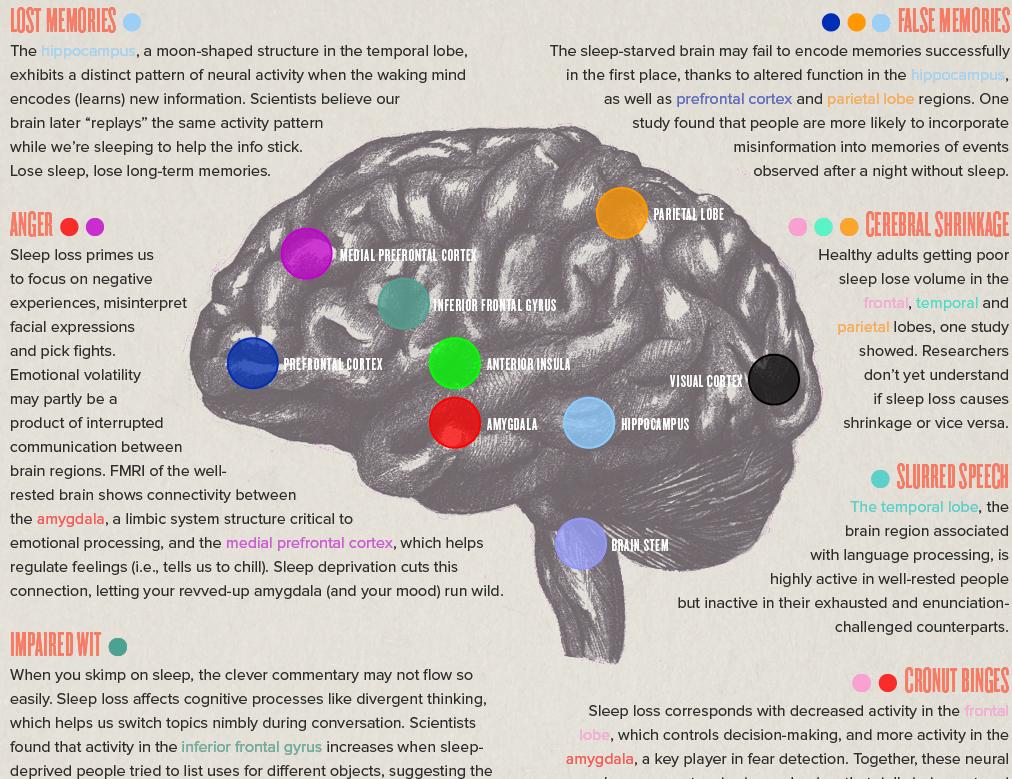 sleep-infographic-1