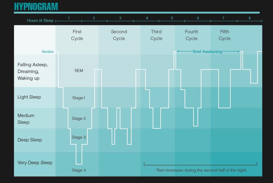 sleep-infographic-7