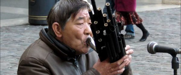 sheng-musical-instrument-cover